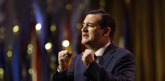 Ted Cruz Attacks PETA's Latest Nonsense