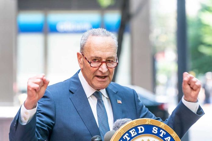 Schumer and Biden Prep America for One Party Rule