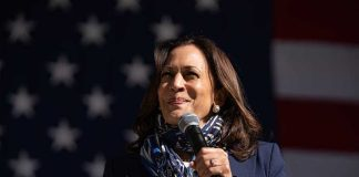 Kamala Harris Replaced Biden During Call With Norway's Prime Minister