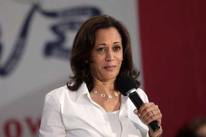 Biden Puts Harris in Charge of Border Crisis