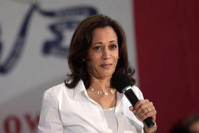 Biden Puts Harris in Charge of Border Crisis