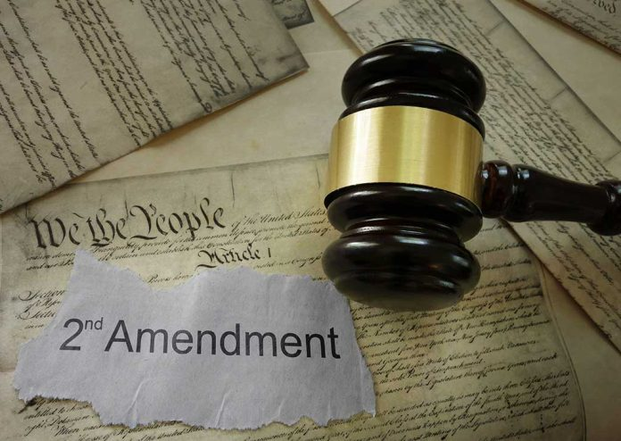 Republicans Gearing Up to Protect 2nd Amendment