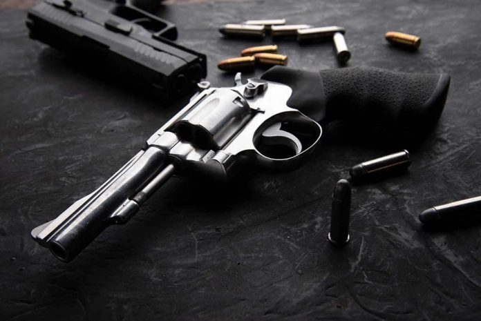 Gun Makers Targeted by Democrats in New York