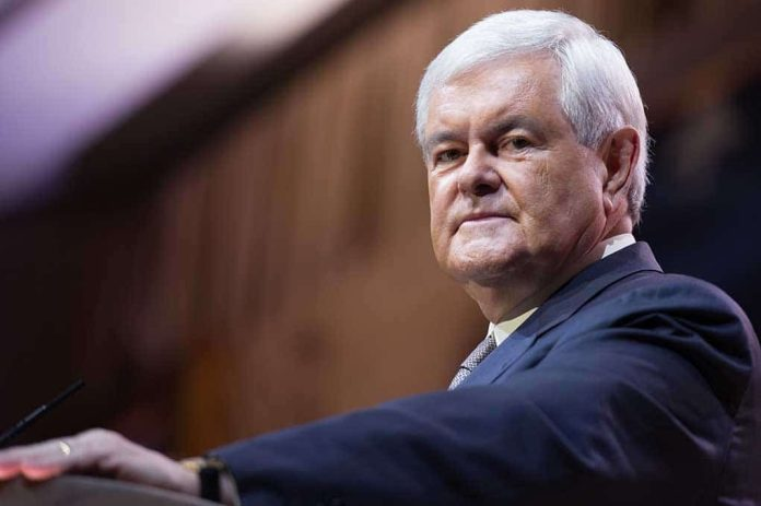 Newt Gingrich Warns Democrats, There Are 'More of Us'